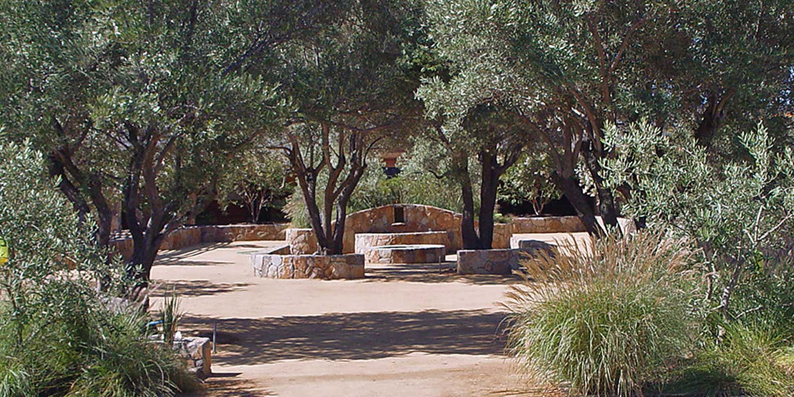 Equestrian ranch ancient olives