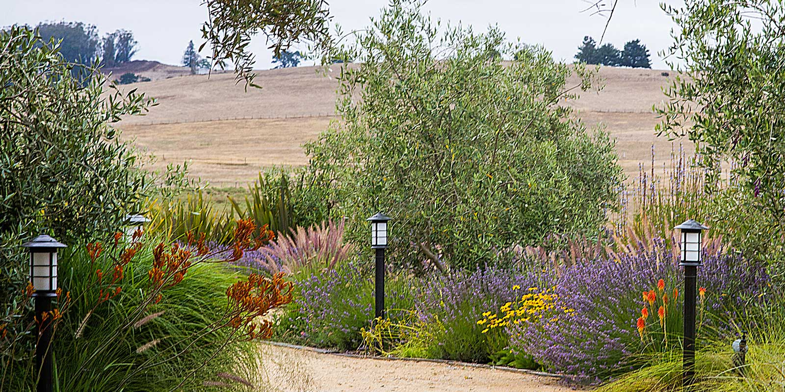 Equestrian ranch landscaped walking path