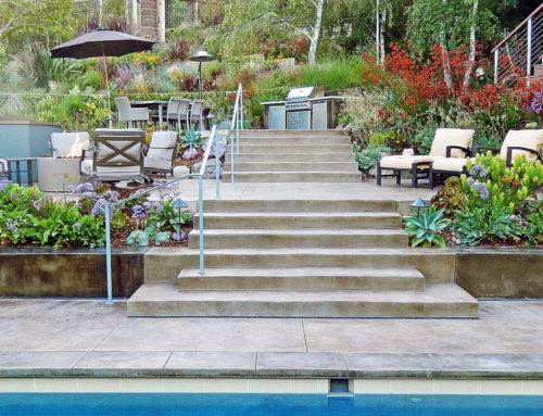 A Mill Valley Hillside Garden
