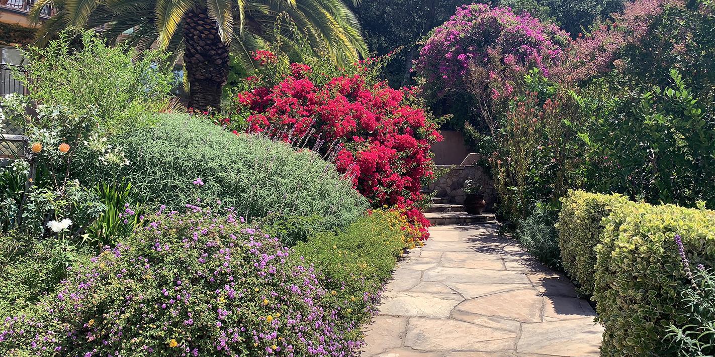 Beautiful Garden Path in Sonoma