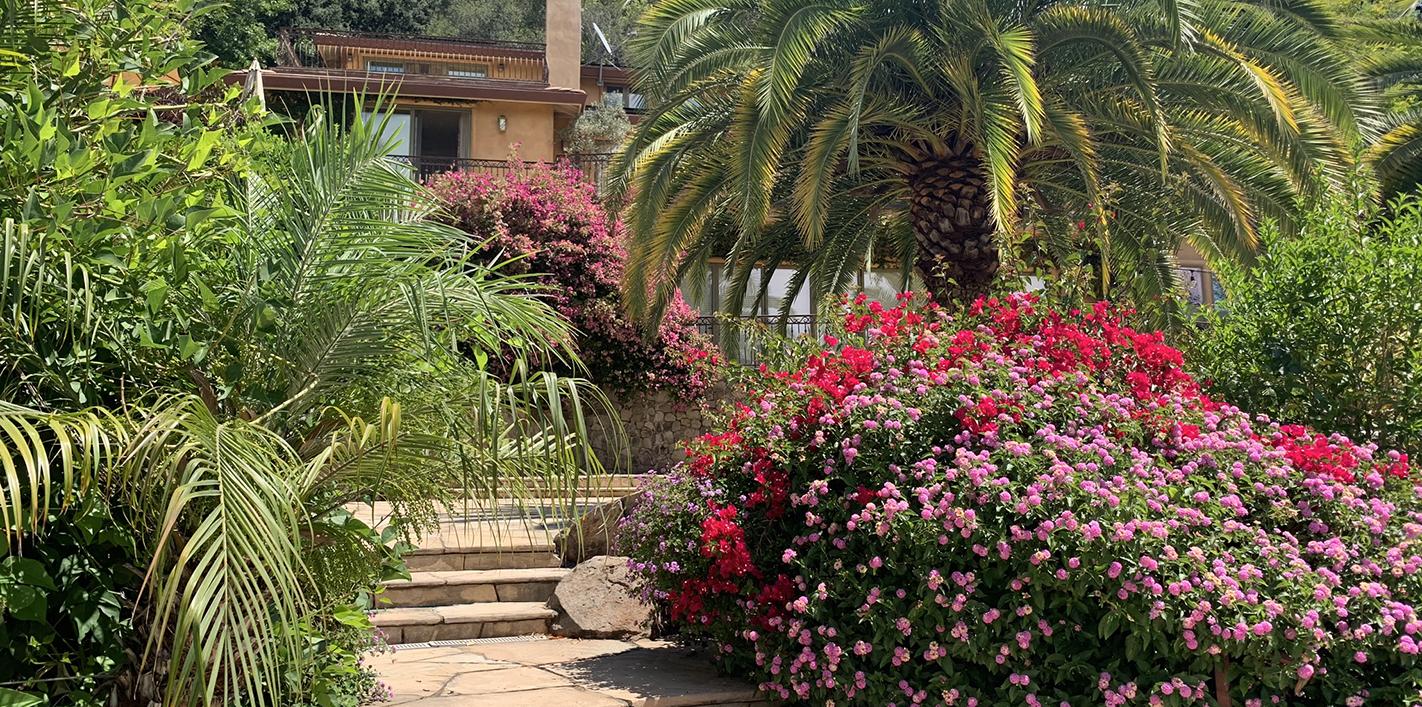 Path to Villa in Sonoma