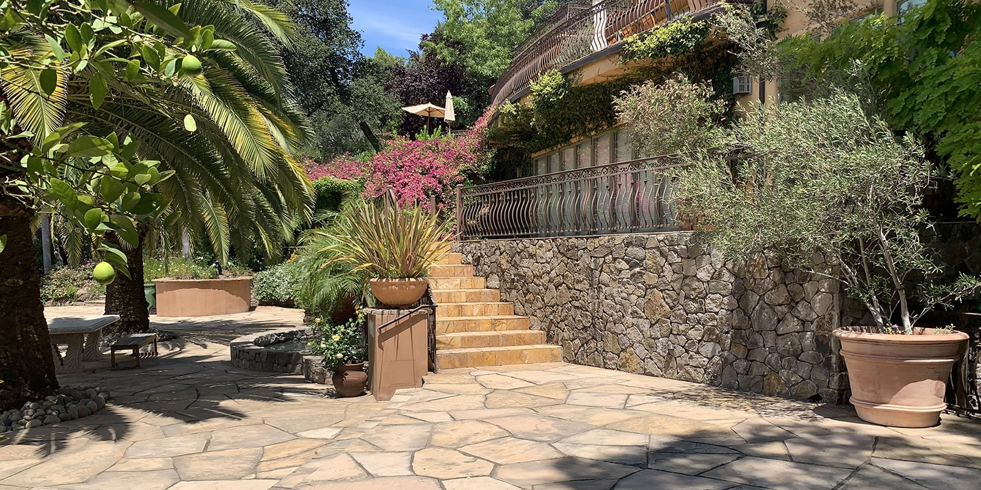 Main Patio Shaded by Palm Trees in Sonoma